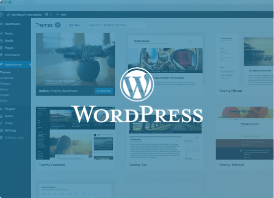 Web Hosting Optimized for WordPress